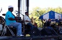 Roots N Blues 2013